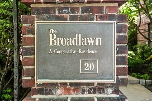 20 N Broadway H236, White Plains, NY 10601 (MLS #H6116586) :: Shalini Schetty Team