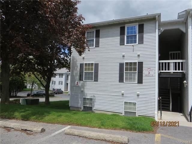 3 Lexington Hill #12, Harriman, NY 10926 (MLS #H6116630) :: Barbara Carter Team