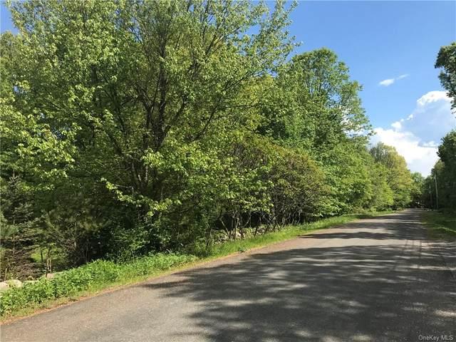 41 Greenshire Way, Walden, NY 12586 (MLS #H6116660) :: Carollo Real Estate