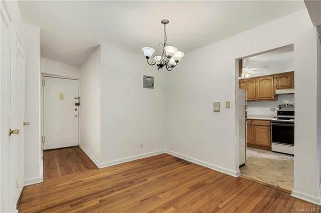 5614 Netherland Avenue 2B, Bronx, NY 10471 (MLS #H6116928) :: Carollo Real Estate