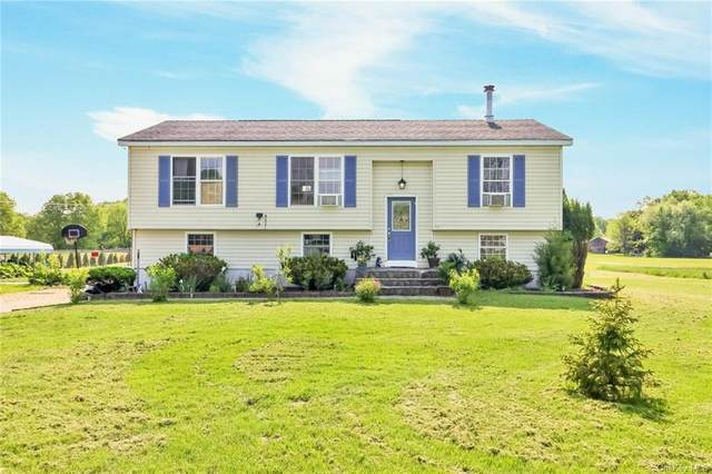 24 Jansen Road, Pine Bush, NY 12566 (MLS #H6117038) :: Cronin & Company Real Estate