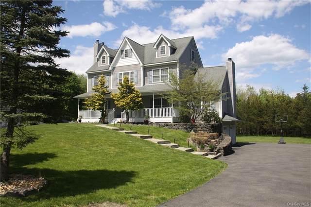 103 Henry W Dubois Drive, New Paltz, NY 12561 (MLS #H6117088) :: Barbara Carter Team