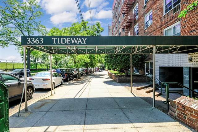 3363 Sedgwick Avenue 1K, Bronx, NY 10463 (MLS #H6117149) :: Shalini Schetty Team