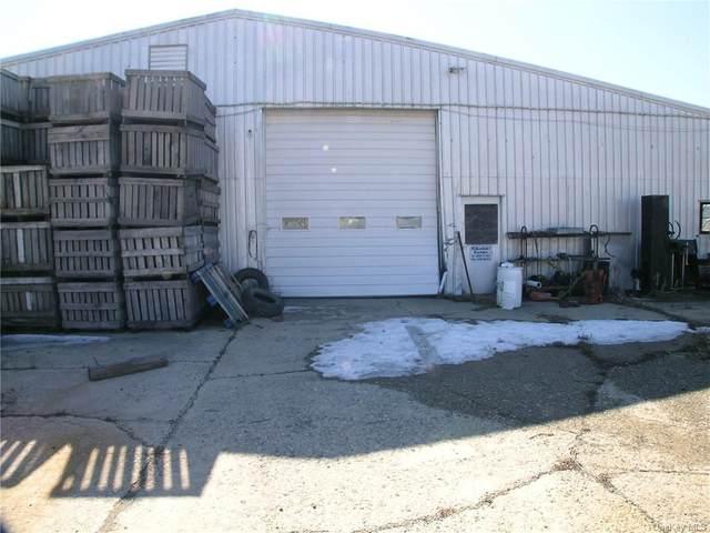 41 Bierstine Lane, Pine Island, NY 10969 (MLS #H6117182) :: Carollo Real Estate