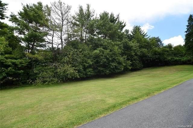 76 Hawkes Avenue, Ossining, NY 10562 (MLS #H6117225) :: Mark Seiden Real Estate Team