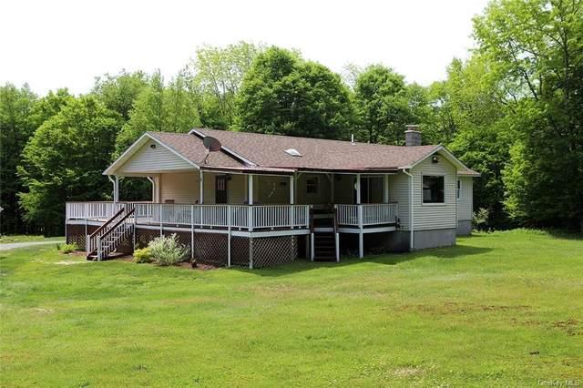 260 Anawanda Lake Road, Fremont, NY 12736 (MLS #H6117441) :: Barbara Carter Team
