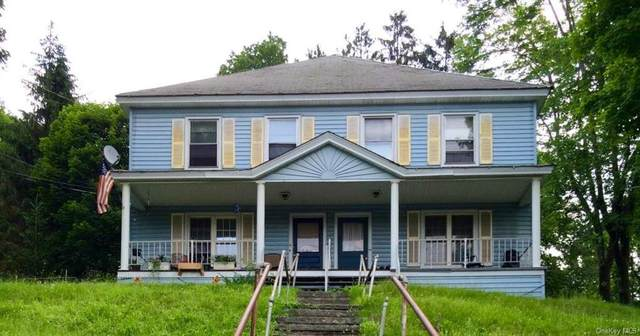 9270 State Route 97, Callicoon, NY 12723 (MLS #H6117462) :: Carollo Real Estate