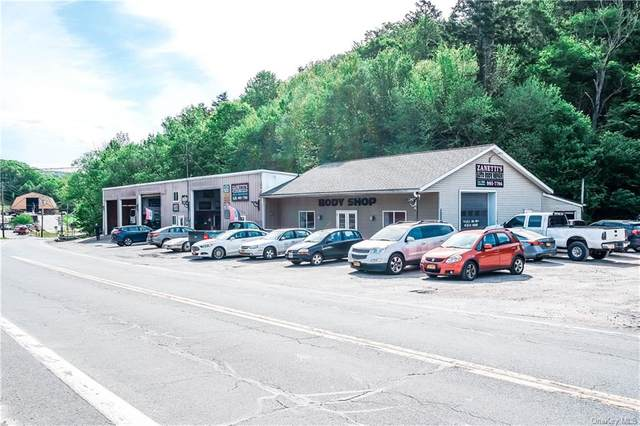7922 State Route 55, Grahamsville, NY 12740 (MLS #H6117556) :: Carollo Real Estate