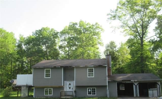 46 Schrempp Lane, Pine Bush, NY 12566 (MLS #H6117689) :: Cronin & Company Real Estate