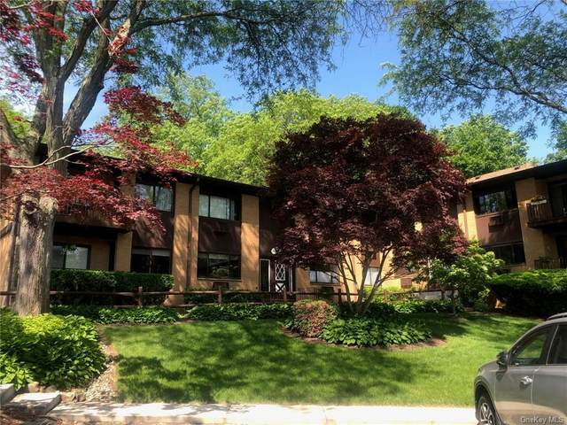 4 W Lawrence Park Drive #10, Piermont, NY 10968 (MLS #H6117717) :: Corcoran Baer & McIntosh
