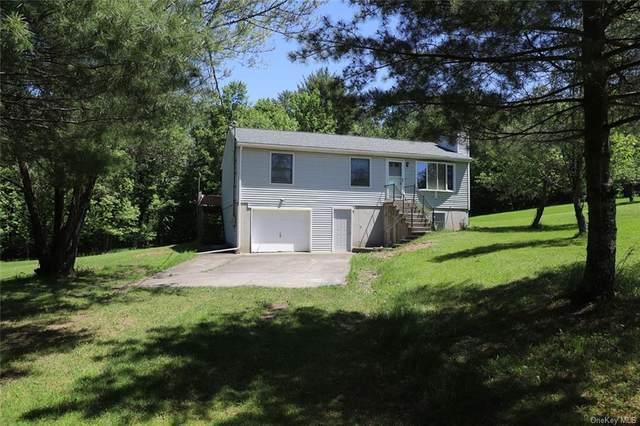 79 Gabel Road, Callicoon, NY 12723 (MLS #H6117784) :: Carollo Real Estate