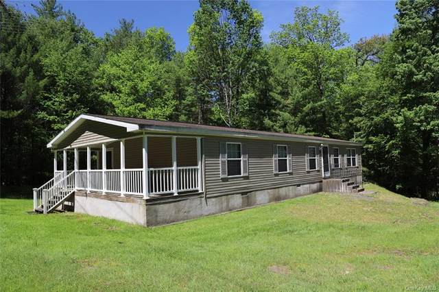 19 Old Route 97, Callicoon, NY 12723 (MLS #H6117807) :: Carollo Real Estate