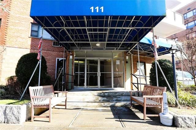 111 E Hartsdale Avenue 6G, Hartsdale, NY 10530 (MLS #H6118316) :: Nicole Burke, MBA | Charles Rutenberg Realty