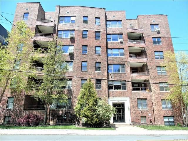 325 Main Street 6H, White Plains, NY 10601 (MLS #H6119446) :: RE/MAX RoNIN