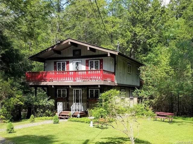 18 Buffalo Trail, Smallwood, NY 12778 (MLS #H6119487) :: Shalini Schetty Team