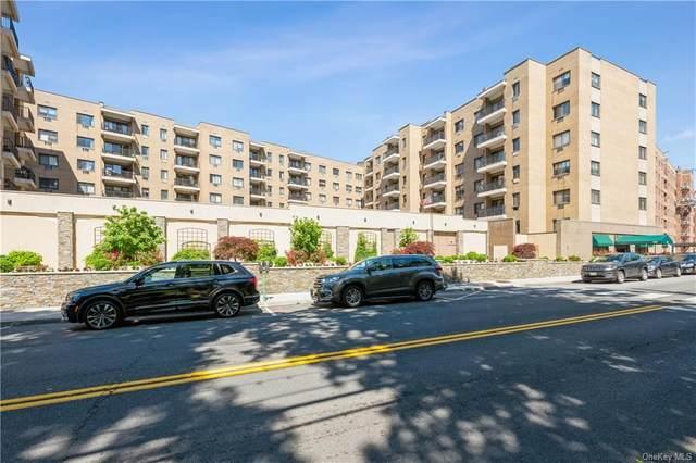 100 E Hartsdale Avenue 3KW, Hartsdale, NY 10530 (MLS #H6119536) :: Howard Hanna | Rand Realty