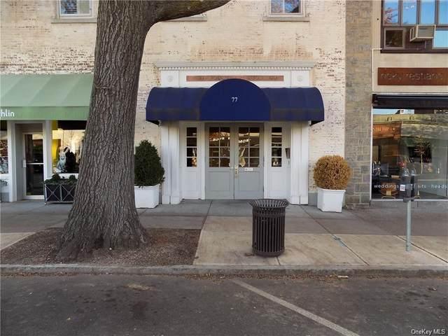 69 Pondfield Road, Bronxville, NY 10708 (MLS #H6119628) :: Carollo Real Estate