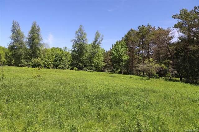 Cr 164, Callicoon, NY 12723 (MLS #H6119634) :: Carollo Real Estate