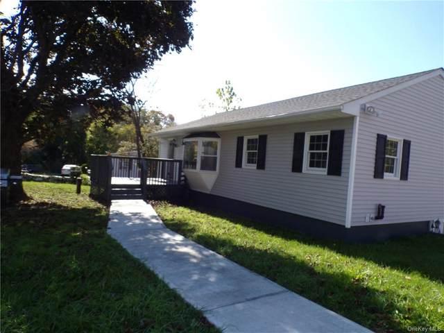 17 Clearview Road, Wingdale, NY 12594 (MLS #H6119647) :: Barbara Carter Team