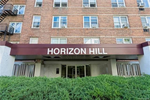 42 Pine Street 5B, Yonkers, NY 10701 (MLS #H6119650) :: Shalini Schetty Team