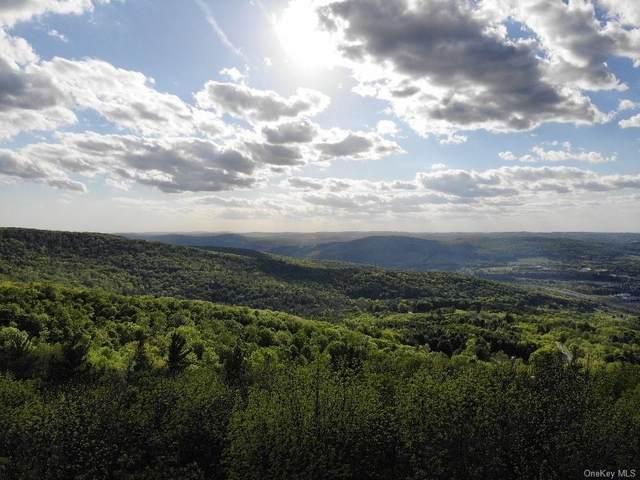 Route 28, Oneonta, NY 13820 (MLS #H6119713) :: Nicole Burke, MBA | Charles Rutenberg Realty