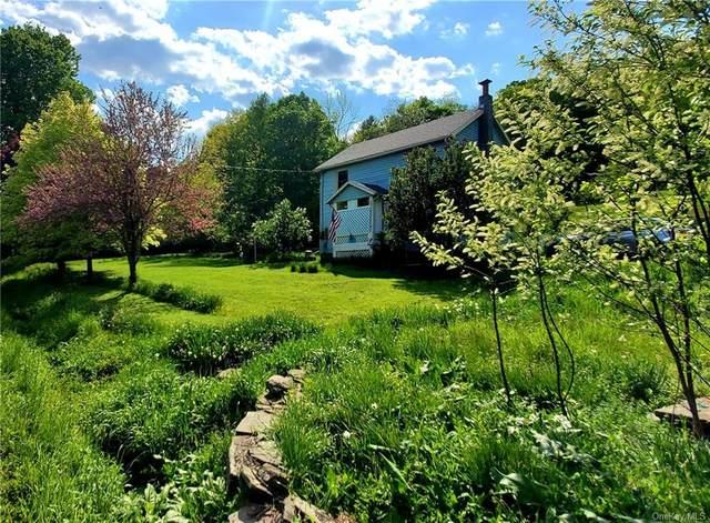 892 Benton Hollow Road, Woodbourne, NY 12788 (MLS #H6119718) :: Cronin & Company Real Estate