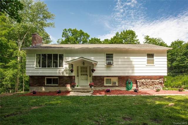 151 Old West Point Road E, Garrison, NY 10524 (MLS #H6119773) :: Carollo Real Estate