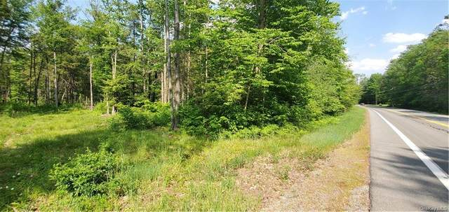 State Route 42, Neversink, NY 12765 (MLS #H6119812) :: Carollo Real Estate