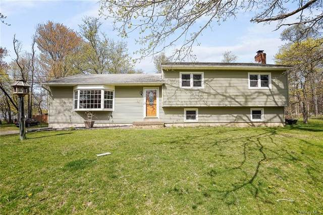 155 Mill Street, Wallkill, NY 12589 (MLS #H6119829) :: Carollo Real Estate