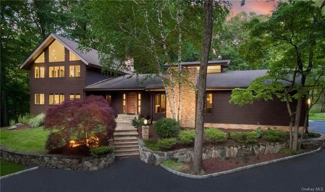 21 Cottonwood Lane, Briarcliff Manor, NY 10510 (MLS #H6119838) :: Nicole Burke, MBA | Charles Rutenberg Realty