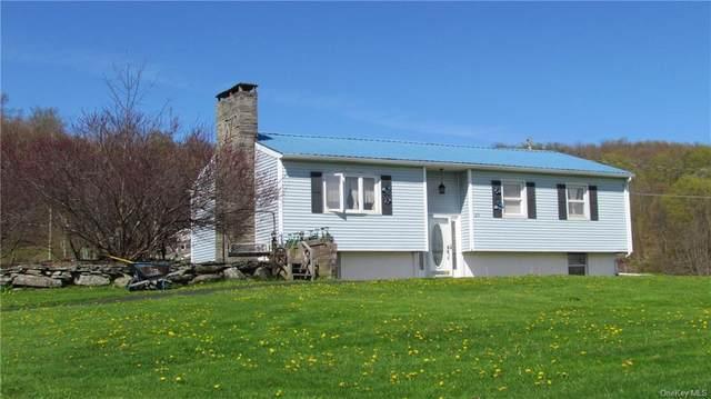 83 Elk Point Road, Livingston Manor, NY 12758 (MLS #H6119859) :: Cronin & Company Real Estate