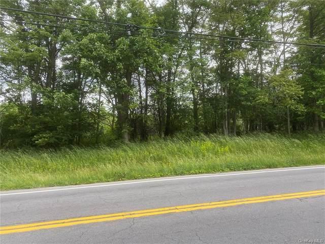 County Hwy 1, Warwick, NY 10990 (MLS #H6119977) :: Cronin & Company Real Estate