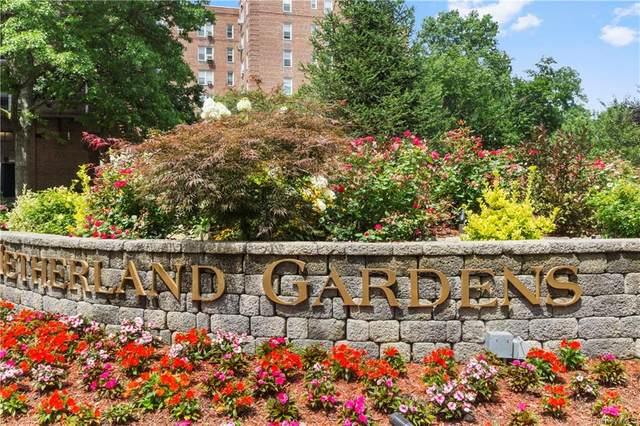 5645 Netherland Avenue 6A, Bronx, NY 10471 (MLS #H6119990) :: Carollo Real Estate