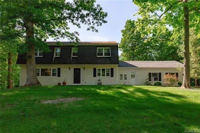 22 Ervin Drive, Wappingers Falls, NY 12590 (MLS #H6120066) :: Goldstar Premier Properties