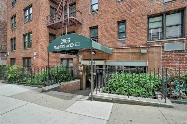 2866 Marion Avenue 3A, Bronx, NY 10458 (MLS #H6120097) :: Shalini Schetty Team
