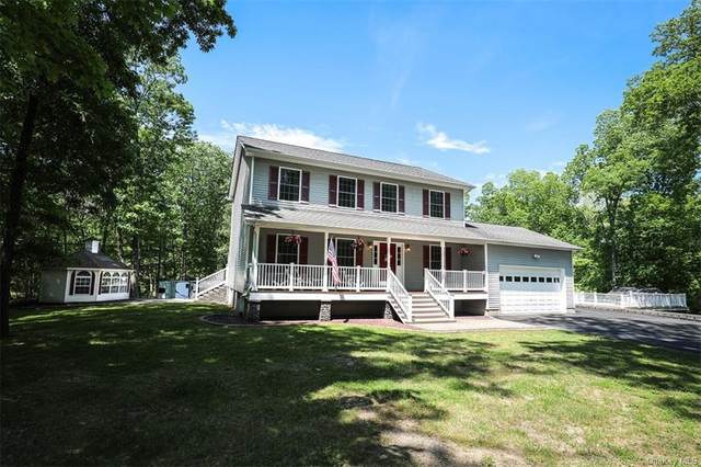 119 Forest Hill Drive, Kingston, NY 12401 (MLS #H6120112) :: RE/MAX RoNIN