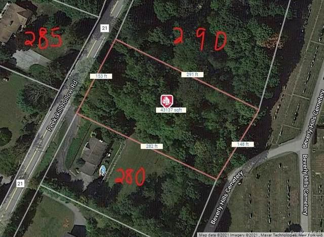288 Peekskill Hollow Road, Putnam Valley, NY 10579 (MLS #H6120131) :: Mark Seiden Real Estate Team