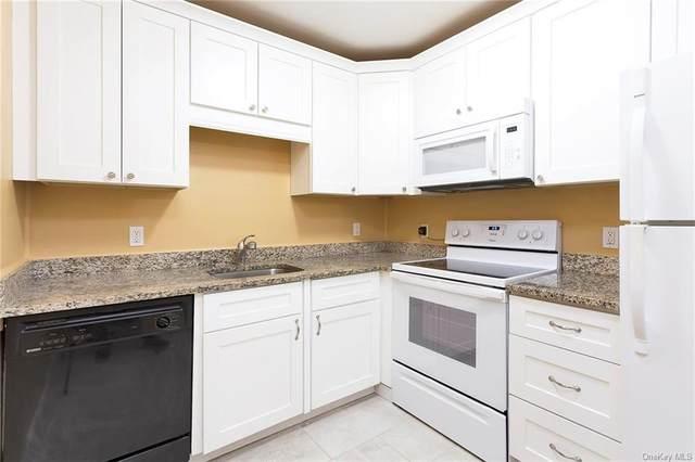 29 Scarborough Lane D, Wappingers Falls, NY 12590 (MLS #H6120157) :: Carollo Real Estate
