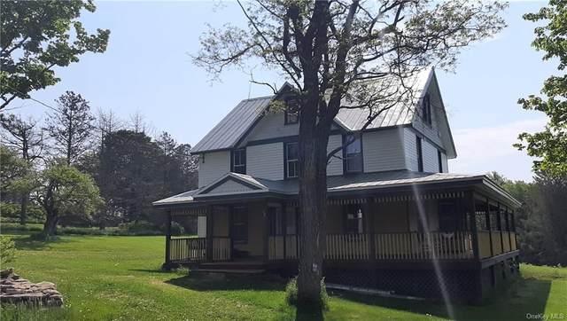 799 Shandelee Road, Livingston Manor, NY 12758 (MLS #H6120260) :: Barbara Carter Team
