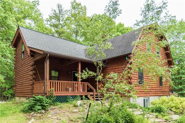 22 Cragswood Road, New Paltz, NY 12561 (MLS #H6120279) :: RE/MAX RoNIN