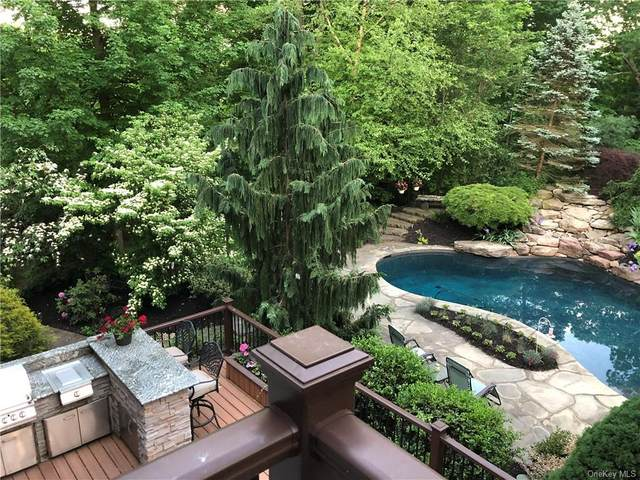 26 Winding Oaks Way, Hopewell Junction, NY 12533 (MLS #H6120298) :: RE/MAX RoNIN