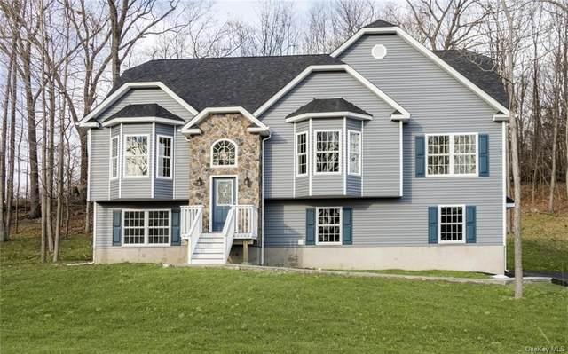113 Cronk Road, Wallkill, NY 12589 (MLS #H6120310) :: Carollo Real Estate