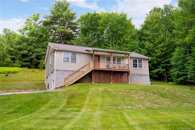 46 Caston Road, Greenfield Park, NY 12435 (MLS #H6120316) :: Carollo Real Estate