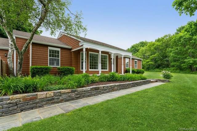 3489 Route 82 Route, Millbrook, NY 12545 (MLS #H6120422) :: Frank Schiavone with Douglas Elliman