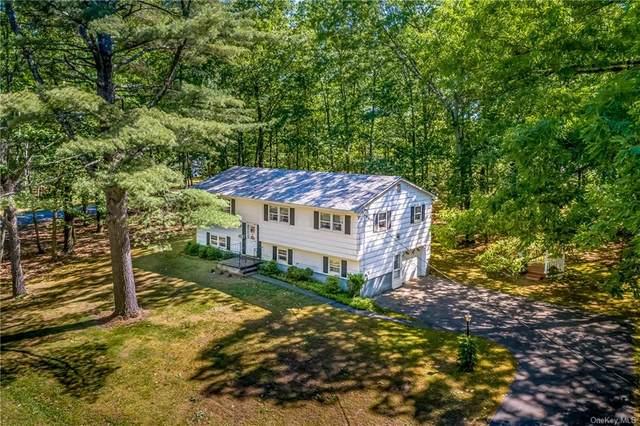 12 Sean Street, Napanoch, NY 12458 (MLS #H6120425) :: Carollo Real Estate