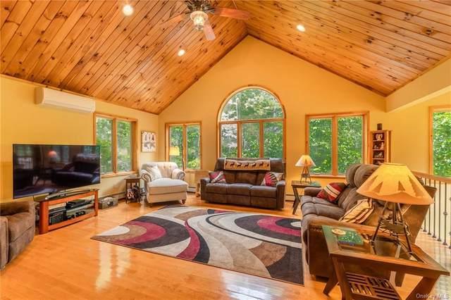 166 Creek Road, Pleasant Valley, NY 12569 (MLS #H6120461) :: Corcoran Baer & McIntosh