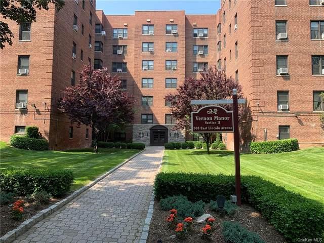 505 E Lincoln Avenue E-507, Mount Vernon, NY 10552 (MLS #H6120468) :: Howard Hanna | Rand Realty