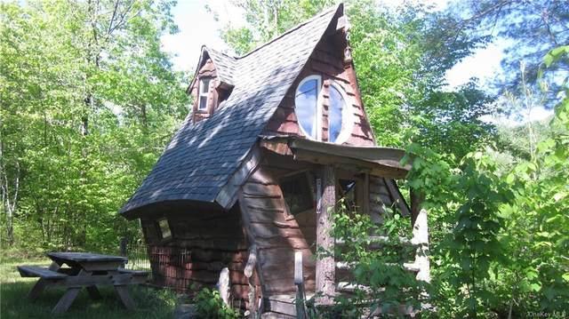 115 Little Spring Brook Road, Roscoe, NY 12776 (MLS #H6120684) :: Cronin & Company Real Estate