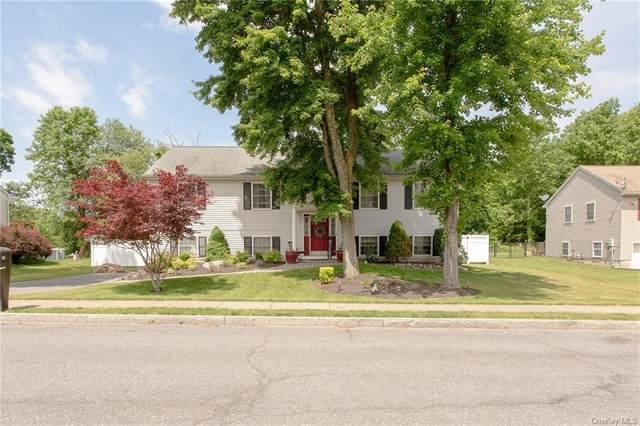 10 Yale Drive, Walden, NY 12586 (MLS #H6120711) :: Laurie Savino Realtor