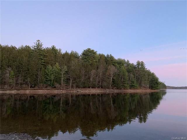Creek Lane, White Lake, NY 12786 (MLS #H6120737) :: Nicole Burke, MBA | Charles Rutenberg Realty